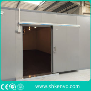 Automatic Cold Storage Freezer Room Sliding Door for Food and Drug Factory pictures & photos