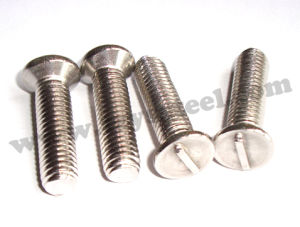 Stainless Steel Stud Bolt and Nut (304)