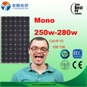 Hot Cheap Mono Poly 250W 260W 280W Solar Panel in Stock pictures & photos