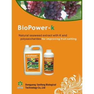 High Potium Water Soluble Foliar Organic Seaweed Extract Fertilizer Bio K