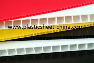 PP Hollow Sheet/Division with Corona Treated for Packaging and Advertising pictures & photos