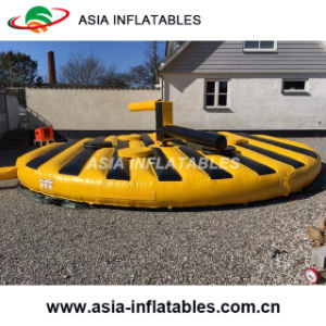 Entertainment Inflatable Last One Standing Sweeper Games pictures & photos