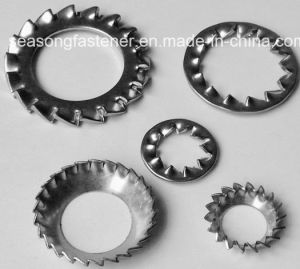 Stainless Steel Serrated Lock Washer / Tooth Washer (DIN6798 A, J, V) pictures & photos