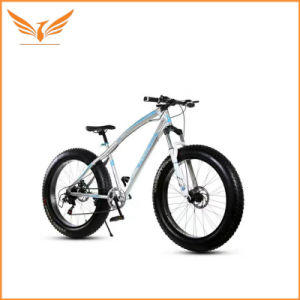 747d7f5fa4f China 26 Inch 21 Speed Fat Bike with 4.0 Tire - China V Brake ...