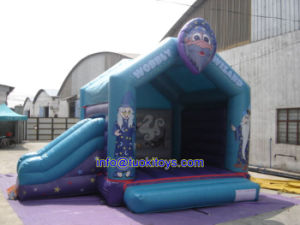 Newest Design Inflatable Bouncer for Party and Events (A147)
