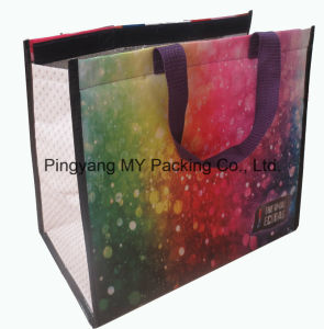 Excellent Quality PP Woven Picnic Bag Lunch Bag pictures & photos