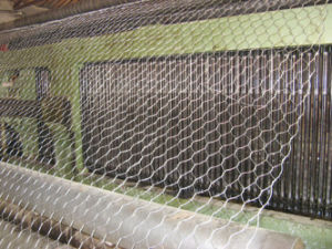 Gabion Cage for Flood Banking pictures & photos