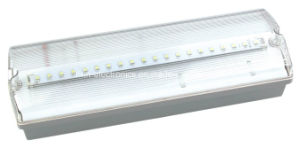 Maintained Battery Operated Bulkhead LED Emergency Light pictures & photos