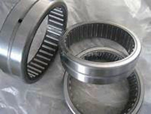 Made in China High Quality Needle Roller Bearings (NA HK AXK)