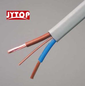 PVC Electrical Cable Twin with Earth Wire pictures & photos