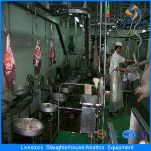 Pig Slaughtering Abattoir Butcher Equipment
