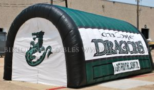 Sport Tunnel Inflatable, Team Inflatable Tunnel, Custom Made Design Inflatable Tunnel, Tunnel with Logo Printing (B7010) pictures & photos