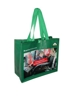 Promotional Cheap Custom Eco-Friendly PP Shopping Non Woven Bag