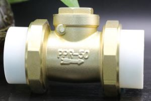 "Brass Non Return Valve 3/4"" 1"" Mini Brass Check Valve"