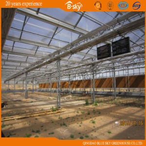 China Supplier Glass Greenhouse with PC Board Covered pictures & photos