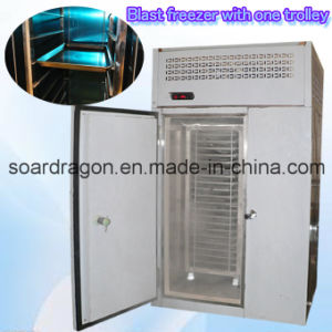 Stainless Steel -35c Blast Freezer of Beef, Meat, Fish Freezing pictures & photos