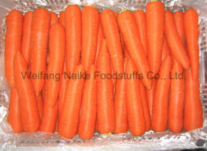 New Crop Fresh Carrot Vegetable pictures & photos