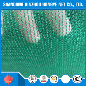 Building Safety Net, Plastic Green Safety Net, Safety Net Specification pictures & photos