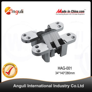 Zinc Alloy Concealed Hinge, Hidden Hinge, Adjustable Hinge pictures & photos