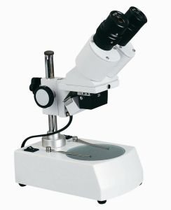 High Quality Xtx-2c Educational Stereo Microscope pictures & photos