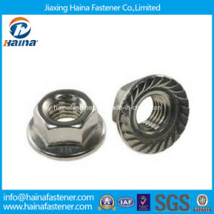 Stock Stainless Steel Serrated Hexagon Flange Nut DIN6923 pictures & photos