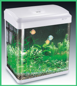 China fish tank aquarium fiber glass tank hl atd100 for Acrylic vs glass fish tank