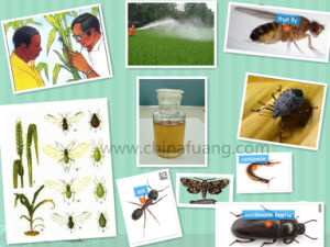 Agrochemicals Plant Protective Insecticide Alphamethrin pictures & photos