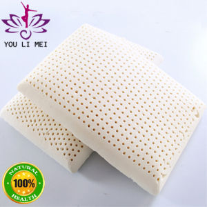 100% Natural Latex Foam Pillow Shaped Like Bread