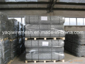 Gabion Mesh Made in China with High Quality pictures & photos