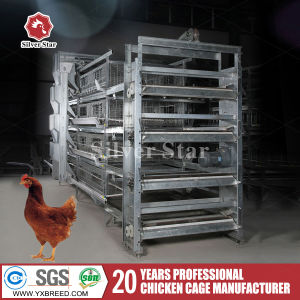 Hot Galvanized Wire Mesh Animal Cage for Laying Hens pictures & photos