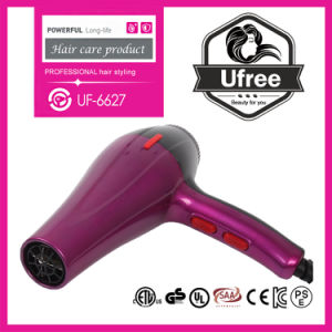 2018 Ufree New Fashion Style High Quality 1800W Suit for Home Use Hair Dryer for Salon Equipment UF-6627 Professional Hair Blower OEM Is Available