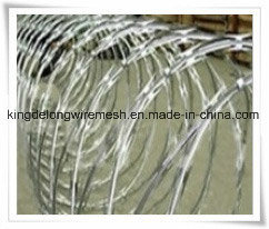 Hot Dipped Galvanized Razor Wire Netting pictures & photos