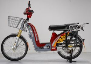 250W, 350W, 450W Pedal Electric Bike Bl-Xcg