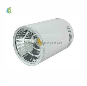 Commercial Lighting COB LED Surface Mounted Downlighting 5W COB LED Down Light for Living Room pictures & photos