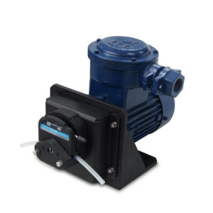 Pneumatic Type Explosion-Proof Motor Peristaltic Pump Fg600s-Q pictures & photos