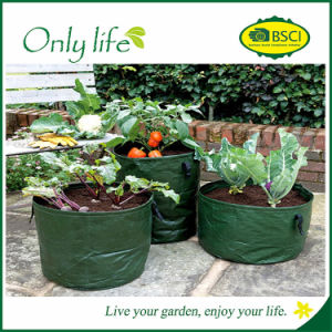 Onlylife Garden Pe Fabric Reusable Vegetable And Fruit Grow Bag