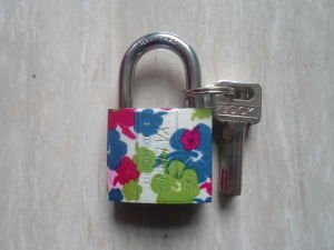 China Hot Sale Top Security Color Painted Brass Cylinder Padlock