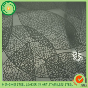 Hermes 304 Stainless Steel Sheet Etching Surface Hot Sale pictures & photos