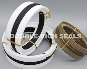 High Quality Viton/Teflon Piton Seals (KDAS)