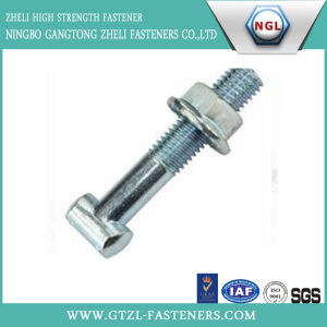 M6-42 of Zinc Plated T Bolt/ T Head Bolt with Carbon Steel pictures & photos