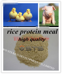 Protein Powder Rice Protein Meal for Fodder with High Quality