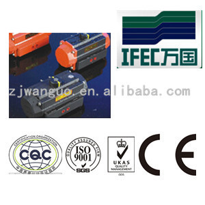 Pneumatic Actuator for Industrial Valves (IFEC-PA100012) pictures & photos