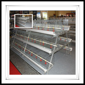 China Best Selling Poultry Battery Cage System For Layers