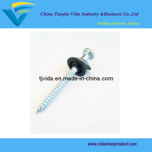 Roofing Screw Nails with Umbrella Head