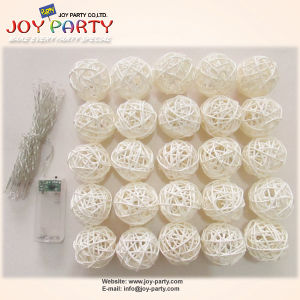 White Rattan Ball 20 Tips LED String Light Decoration