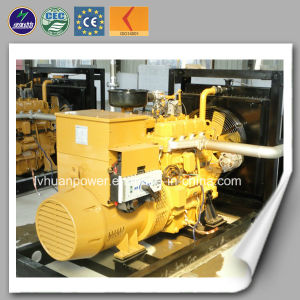 CE ISO Approve Power Biogas Generator Price pictures & photos