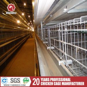 Chicken Battery Cages From China Factory