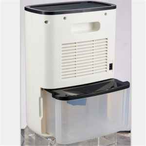 ABS Shell Semiconductor Dehumidifier with Ionizer pictures & photos