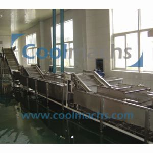 Frozen Fruit Vegetable Processing Machines pictures & photos