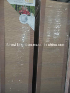 UL Listed HPL Flush Laminated Internal Fire Door pictures & photos